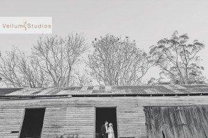 Gabbinbar_Wedding_Photographer-44