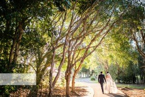 Hope_Island_Wedding_Photographer-32