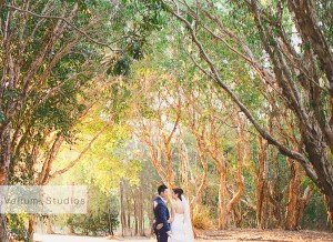 Hope_Island_Wedding_Photographer-33