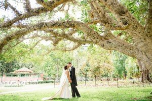 Cloudland_Wedding-32
