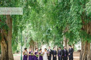 Cloudland_Wedding-33