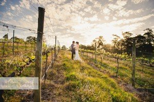 Ocean_View_Estate_Wedding_Photographer-30