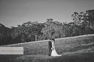 Ocean_View_Estate_Wedding_Photographer-38