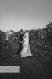 Sirromet_Wedding_Brisbane_Photographer-44