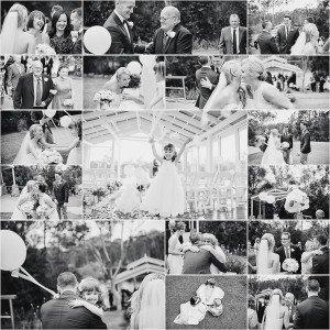 Sirromet_Wedding_Photographer-33