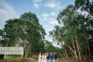 Sirromet_Wedding_Photographer-34