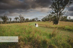 Sirromet_Wedding_Photographer-39