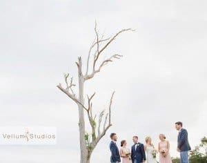 Sirromet_Wedding_Photographer-42