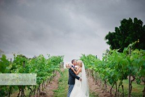 Sirromet_Wedding_Photographer-49