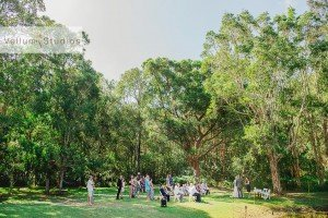 Port_Macquarie_Wedding-19