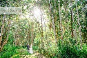 Port_Macquarie_Wedding-27