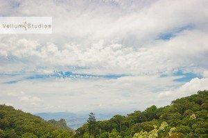 OReillys_Rainforest_Retreat_Wedding-01