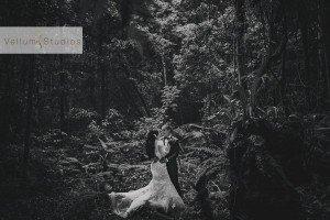 OReillys_Rainforest_Retreat_Wedding-30