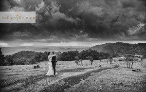 OReillys_Rainforest_Retreat_Wedding-37