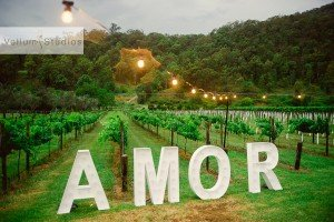 OReillys_Rainforest_Retreat_Wedding-44