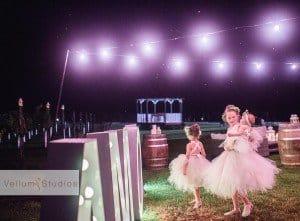OReillys_Rainforest_Retreat_Wedding-49