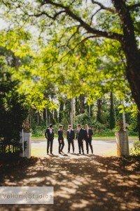Maleny_Manor_Wedding-03