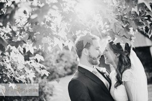 Maleny_Manor_Wedding-41