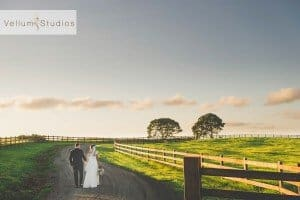 Maleny_Manor_Wedding-52