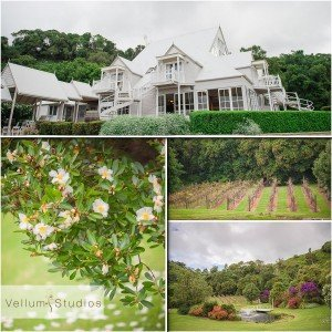 St_Stepehens_Maleny_Wedding-40