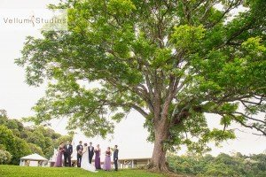 St_Stepehens_Maleny_Wedding-55