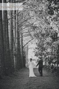 maleny_wedding_photographer-42