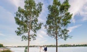 northshore-hamilton-wedding-photographer57-2