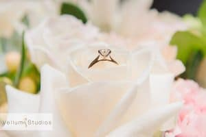 northshore-hamilton-wedding-photographer03