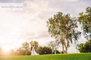northshore-hamilton-wedding-photographer50